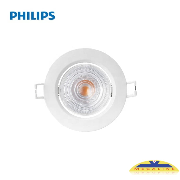 rs251 philips
