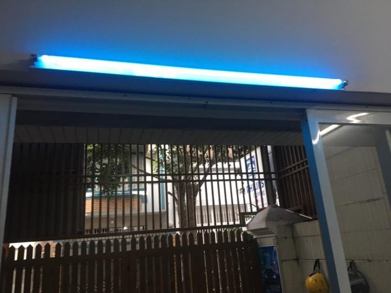 Sử dụng bóng đèn tia cực tím UV Philips để bảo vệ sức khỏe
